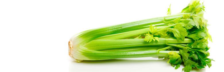 celery.jpg (36.83 Kb)