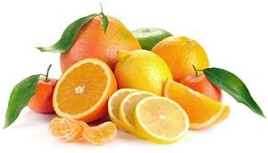citrusovi.jpg (19.36 Kb)