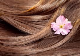 Чому випадає волосся