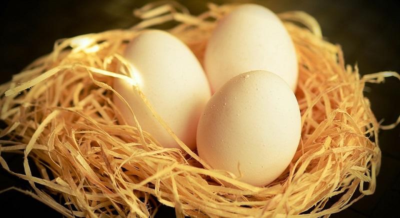 Що ви не знали про курячі яйця?