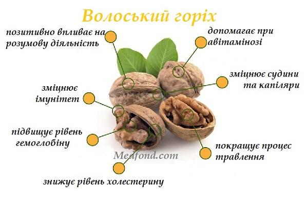 korist_voloskih_gorihiv.jpg (68.65 Kb)