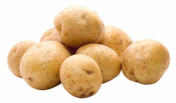 Молода картопля – користь для організму людини