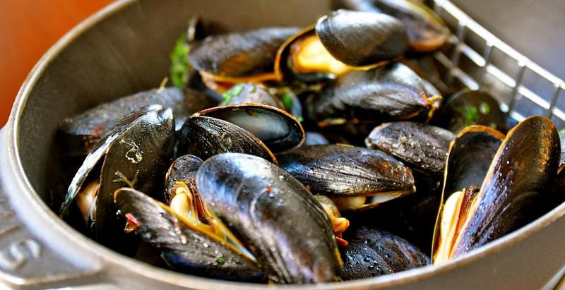 mussels0recipe.jpg (141.29 Kb)