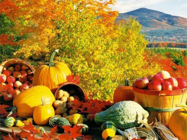 Харчування восени: кілька корисних порад