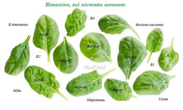 vitamini_yaki_mistit_shpinat.jpg (67.19 Kb)
