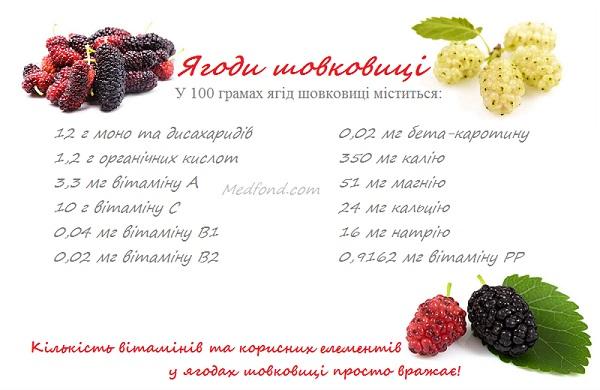 yagodi_shovkovici.jpg (75.23 Kb)